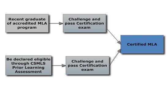 CSMLS - SCSLM / Medical Laboratory Assistant